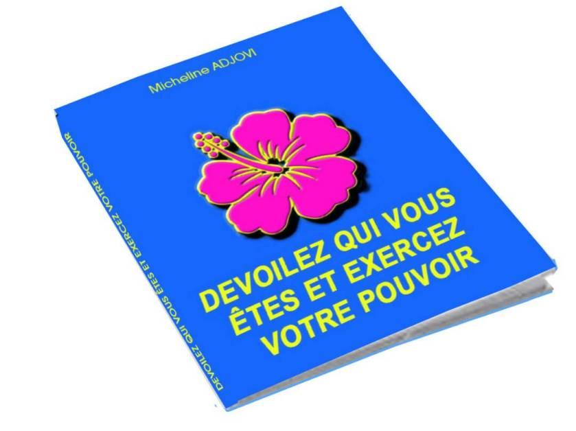 Image Dévoilez 1
